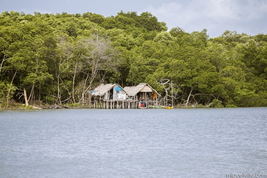 Manaus2